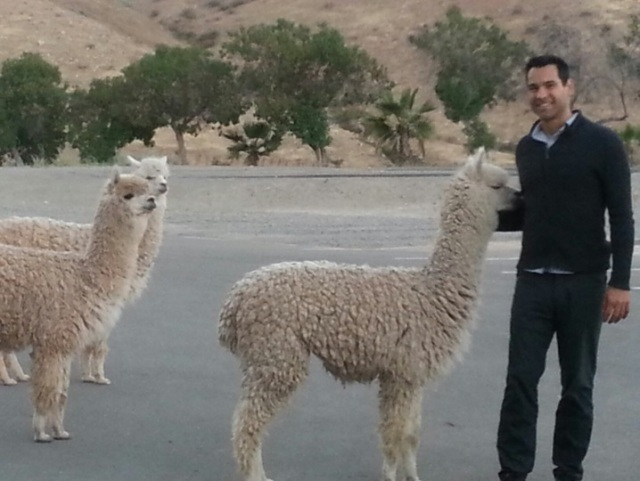 Senior MineSight Specialist, Ernesto Vivas, meets some of the 'locals'.